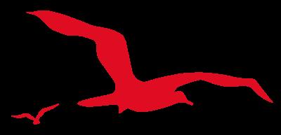 Logo piscines albatros